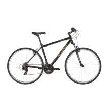 Alpina Eco C10 Black Férfi Cross Kerékpár