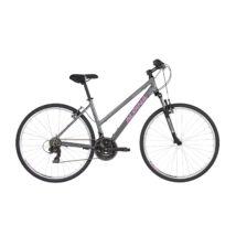 ALPINA ECO LC10 Grey Női Cross kerékpár