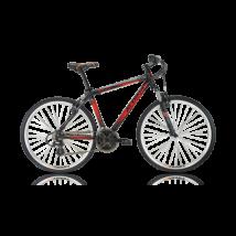 ALPINA ECO C20 Férfi Cross kerékpár