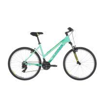 Alpina Eco LM10 női Mountain Bike