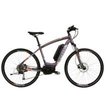 Baddog Canario 8 2017 férfi E-bike