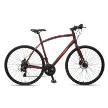 Baddog Pointer 2016 férfi fitness kerékpár