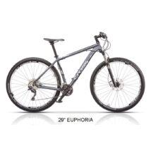 "Cross Euphoria 29"" 2015 férfi Mountain Bike"