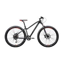 "Gepida RUGA 29"" 2018 férfi Mountain Bike"