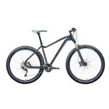 "Gepida ASGARD 29"" 2018 férfi Mountain Bike"