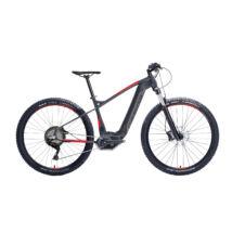 "Gepida RUGA DEORE 10 POWERTUBE 29"" 2019 férfi E-bike"