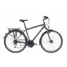Gepida Alboin 300 28'' 2019 Férfi Trekking Kerékpár