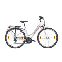 Gepida Alboin 300 28'' 2019 Női Trekking Kerékpár