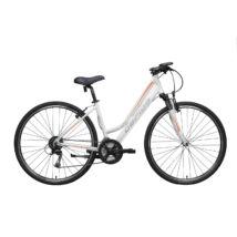 """Gepida ALBOIN 300 CRS 28"""" 2020 női Cross Kerékpár"""