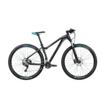 "Gepida ASGARD 29"" 2020 férfi Mountain Bike"