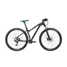 "Gepida ASGARD 29"" 2020 férfi Mountain Bike"
