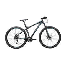 "Gepida SIRMIUM 29"" 2020 férfi Mountain Bike"