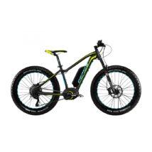 Gepida ELEMUND FATBIKE Performance (500 Wh) 2017 E-bike