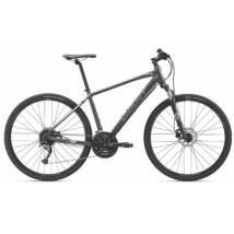 Giant Roam 2 Disc 2019 Férfi Cross Kerékpár