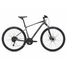Giant Roam 2 Disc 2021 férfi Cross Kerékpár