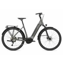 Giant AnyTour E+ 2 LDS 2021 női E-bike