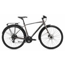 Giant Escape City Disc 2 2020 Férfi Fitness kerékpár