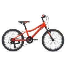 Giant Xtc Jr 20 Lite 2019 Férfi Mountain Bike