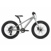 Giant STP 20 2021 Gyerek Kerékpár
