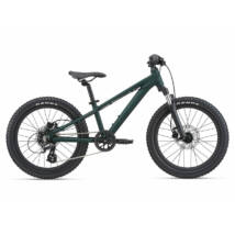 Giant STP 20 FS 2021 Gyerek Kerékpár