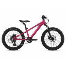 Giant Liv STP 20 FS Liv 2021 Gyerek Kerékpár