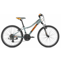 Giant Xtc Jr 1 24 2019 Férfi Mountain Bike