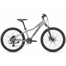 Giant XtC Jr Disc 24 2021 Gyerek Kerékpár