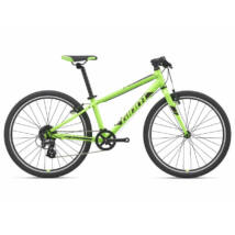 Giant ARX 24 2021 Gyerek Kerékpár
