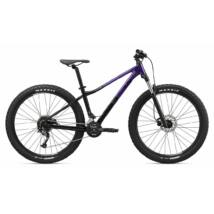 Giant Liv Tempt 2 (GE) 2020 Női Mountain Bike kerékpár