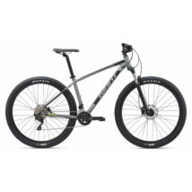 Giant Talon 29 1 (GE) 2020 Férfi Mountain bike