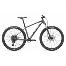 Giant Talon 29 1 2020 Férfi Mountain bike