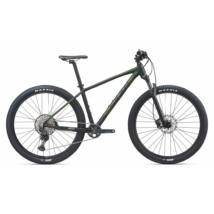 Giant Terrago 29 1 2020 Férfi Mountain bike