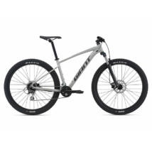 Giant Talon 29 2 2021 férfi Mountain Bike