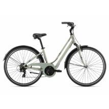 Giant Liv Flourish FS 3 2021 női City Kerékpár