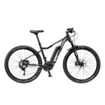 KTM MACINA MIGHTY 291 2019 E-bike