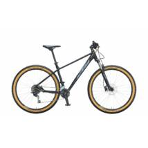KTM Ultra Fun 29 2021 férfi Mountain Bike black matt (grey+gold)