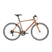 KELLYS Physio 10 2019 Férfi Fitness kerékpár