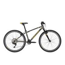 """KELLYS Naga 90 13.5 (26"""") 2020 Gyerek kerékpár"""