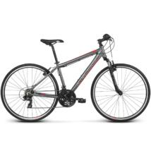 Kross Evado 1.0 2018 férfi Cross Kerékpár graphite-red matte