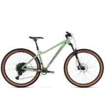Kross DUST 1.0 2020 férfi Mountain Bike