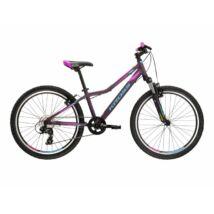 Kross Lea JR 2.0 2022 Gyerek Kerékpár purple-blue matte