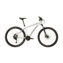 Lapierre Edge 3.7 2020 férfi Mountain Bike