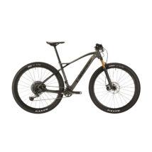 Lapierre Prorace 8.9 2020 férfi Mountain Bike