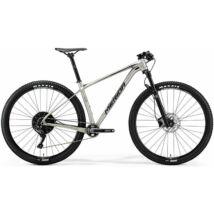 MERIDA BIG.NINE LIMITED 2018 férfi Mountain Bike selyem titán (fekete)