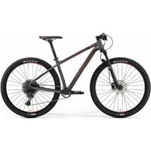MERIDA BIG.NINE 600 2019 FÉRFI MOUNTAIN BIKE matt sötétezüst