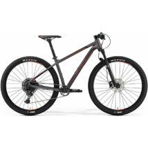 Merida Big.Nine 600 2019 Férfi Mountain Bike