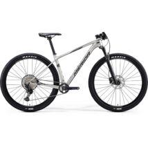 MERIDA BIG.NINE 5000 2020 férfi Mountain bike