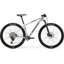 MERIDA BIG.NINE 5000 2020 férfi Mountain bike