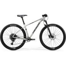 MERIDA BIG.NINE NX-ED 2020 férfi Mountain bike