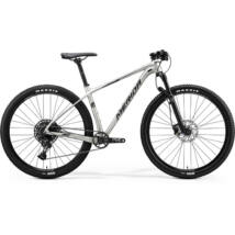 MERIDA BIG.NINE NX-ED 2020 férfi Mountain bike